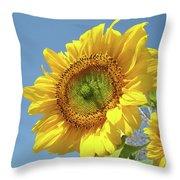 Sun Flowers Garden Art Prints Baslee Troutman Throw Pillow