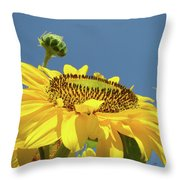 Sun Flowers Summer Sunny Day 8 Blue Skies Giclee Art Prints Baslee Troutman Throw Pillow
