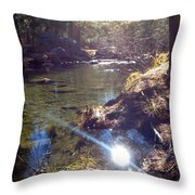 Sun Glare Off River Throw Pillow