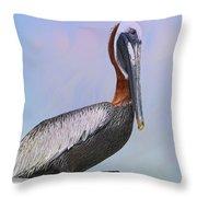 Sun Glow Pelican Throw Pillow