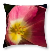 Sun Greeting Throw Pillow