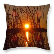 Sun In Reeds Throw Pillow