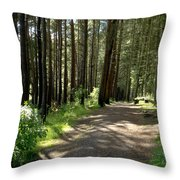 Sun In The Forest. Throw Pillow