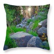 Sun In The Sequoias Throw Pillow