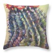 Sun Kissed Barrel Cactus Throw Pillow