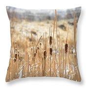 Sun Kissed Cattails - Casper Wyoming Throw Pillow