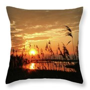 Sun Kissed Throw Pillow