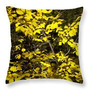 Sun-kissed Golden Leaves 2 Throw Pillow