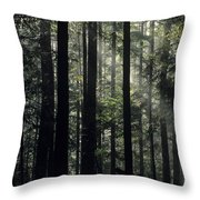Sun Light Throw Pillow