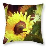 Sun Of The Flower Throw Pillow by Michael Hope