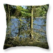 Sun Of The Loch Afternoon. Throw Pillow