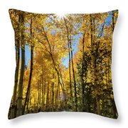 Sun Peaking Through The Aspens  Throw Pillow