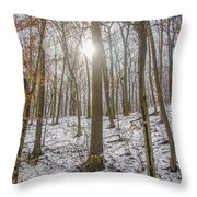 Sun Peaking Through The Trees - Fairmount Park Throw Pillow