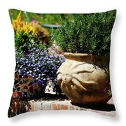 Sun Pot Throw Pillow