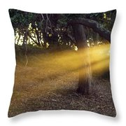Sun Rays 2 Throw Pillow
