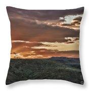 Sun Rays On Colorado Sage Throw Pillow