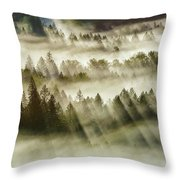 Sun Rays Over Foggy Oregon Forest Throw Pillow