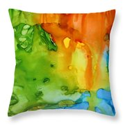 Sun Reflected In The Waterfall Throw Pillow