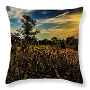 Sun Setting At Valley Forge Throw Pillow