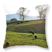 Sun Shadows Throw Pillow
