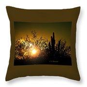 Sun Shining Throw Pillow