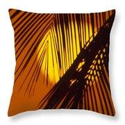 Sun Shining Through Palms Throw Pillow
