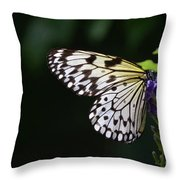 Sun Shining Through The Wings Of A Rice Paper Butterfly Throw Pillow