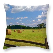 Sun Shone Hay Made Throw Pillow