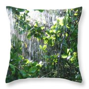 Sun Shower Photograph Throw Pillow