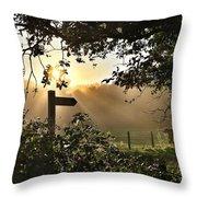 Sun Sign Throw Pillow