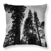 Sun Star  Throw Pillow