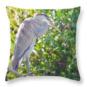 Sun Streaked Throw Pillow