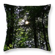 Sun Through Trees In Forest Throw Pillow