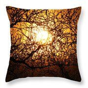 Sun Tree Throw Pillow