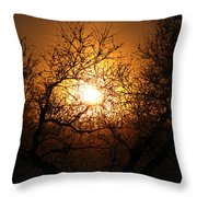 Sun Trees Throw Pillow