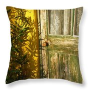 Sun Warmed And Weathered Throw Pillow