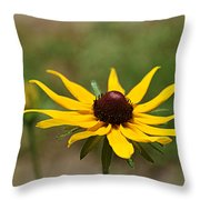 Sun Worshiper Throw Pillow