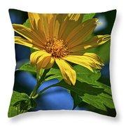 Sun Yellow Throw Pillow