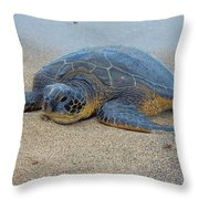Sunbathing Honu Throw Pillow