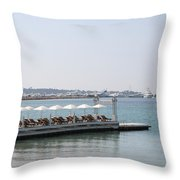 Sunbathing In A Row Throw Pillow