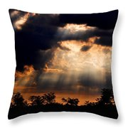 Sunbeam Throw Pillow