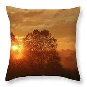 Sunbeam Through Cottonwoods Throw Pillow