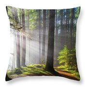 Sunbeams Along Hiking Trails Throw Pillow