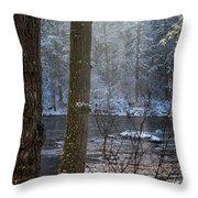 Sunbreak On A Snowy Day Throw Pillow