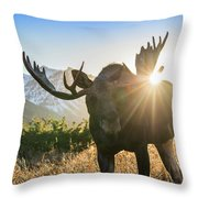 Sunburst In The Antlers Throw Pillow