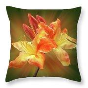 Sunburst Orange Azalea Throw Pillow