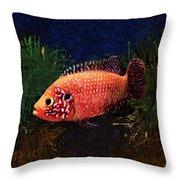 Sunburst Peacock Cichlid  Throw Pillow