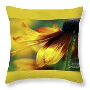 Sunburst Petals - 2 Throw Pillow