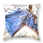 Sunday At Red Willows IIi Throw Pillow