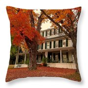 Sunday In The Country 2 Throw Pillow